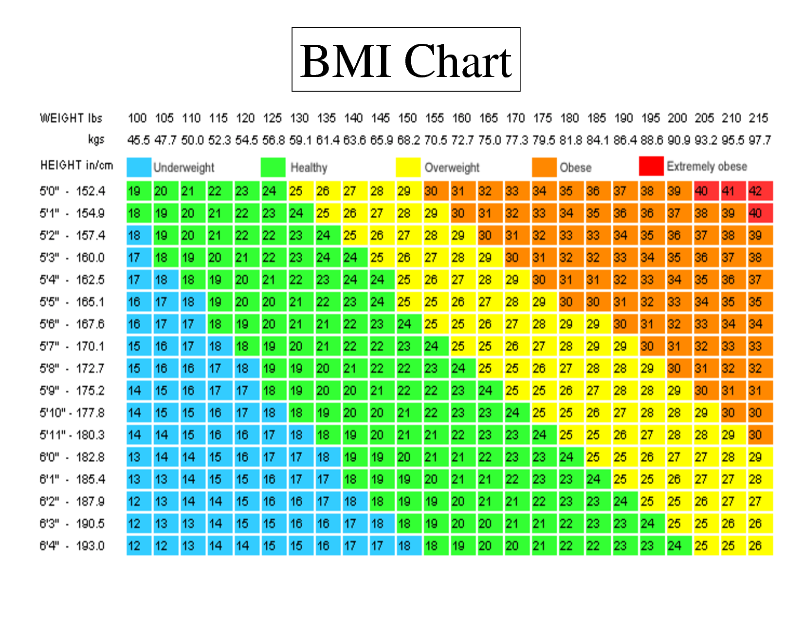 Body Mass Index – Digital Health And Fitness Products